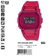 DW-5600SB-4ER